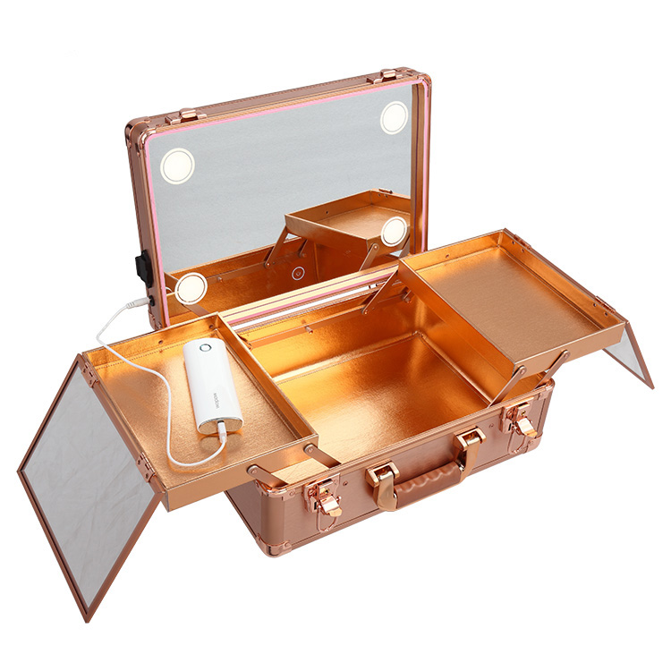 Professional Cosmetic Makeup Case Organizer Trolley LED Mirror Rose Gold LC019